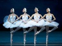 Семинар по русскому языку и культуре «Балет Лебединое озеро»